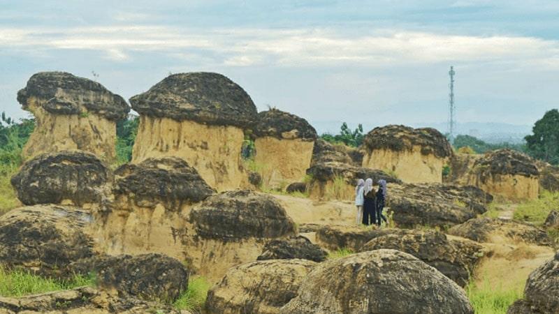 Wisata di Bukit Jamur Gresik