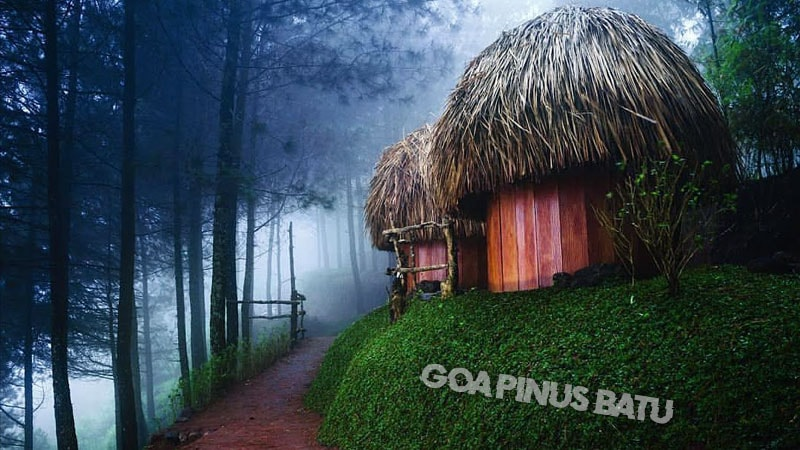 Goa Pinus Batu Malang