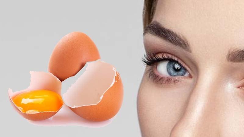 cara menebalkan alis mata dengan kuning telur