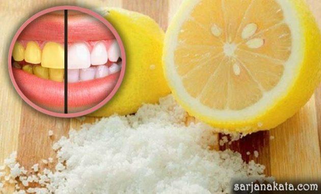 Lemon dan Garam