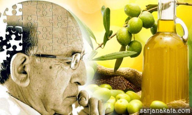 Mengobati Penyakit Alzheimer