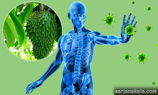 Meningkatkan Sistem Imun Tubuh