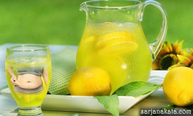 Rutin Minum Lemon