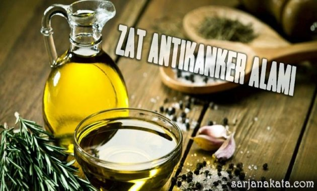 Zat Antikanker Alami