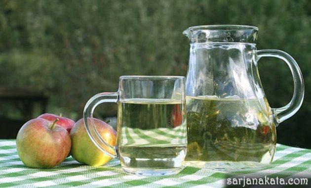 Cuka Apel dan Air