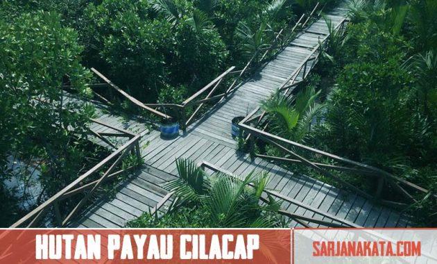 Hutan Payau Cilacap