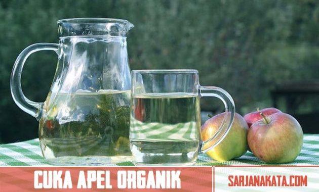 Minum Cuka Apel Organik