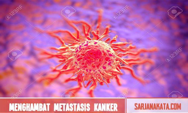 Menghambat metastasis kanker