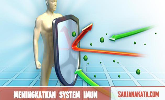 Meningkatkan system imun
