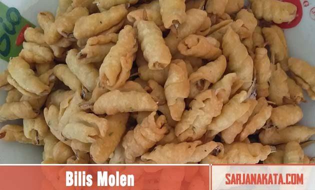 Bilis Molen